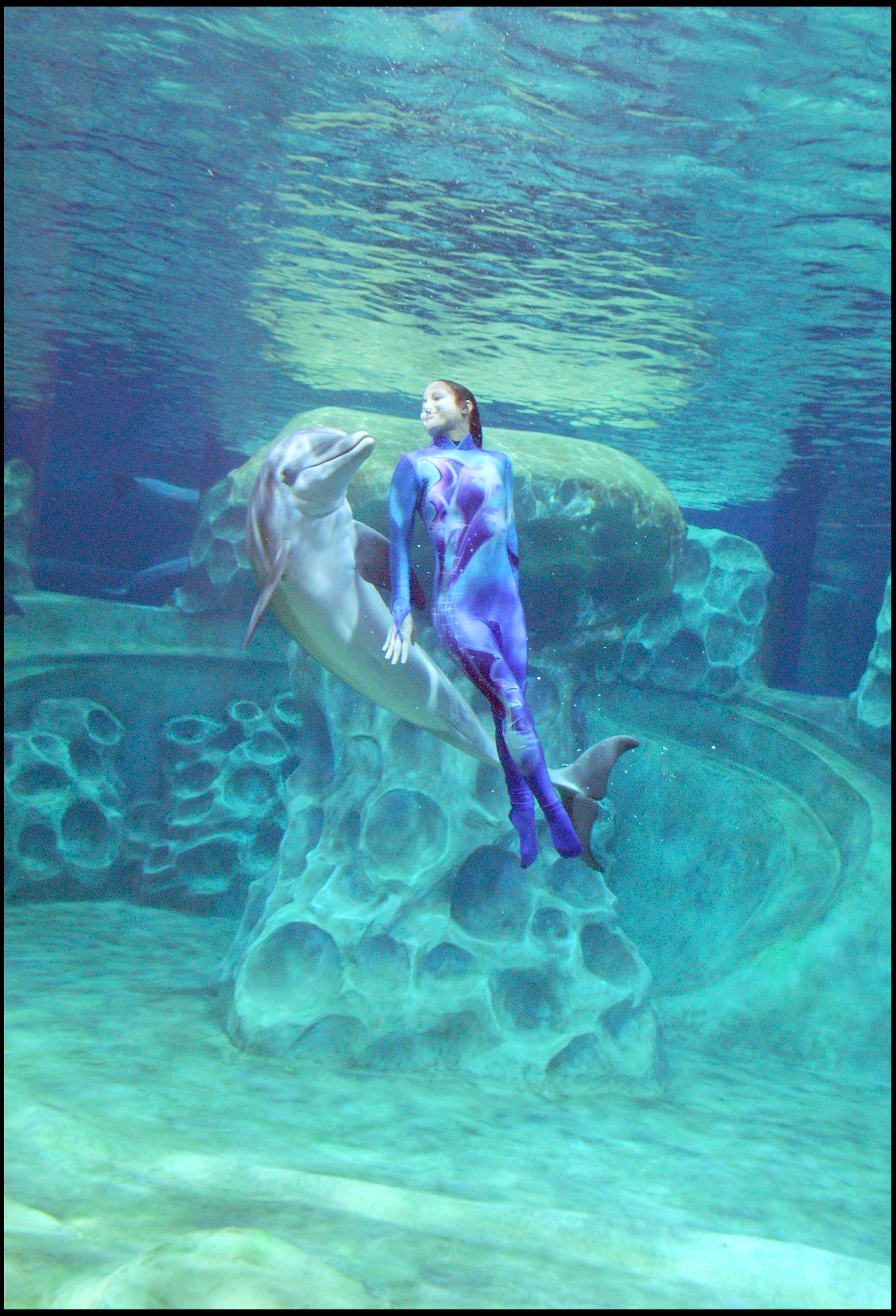 At Georgia Aquarium on Pinterest   Aquarium, Dolphins and ...