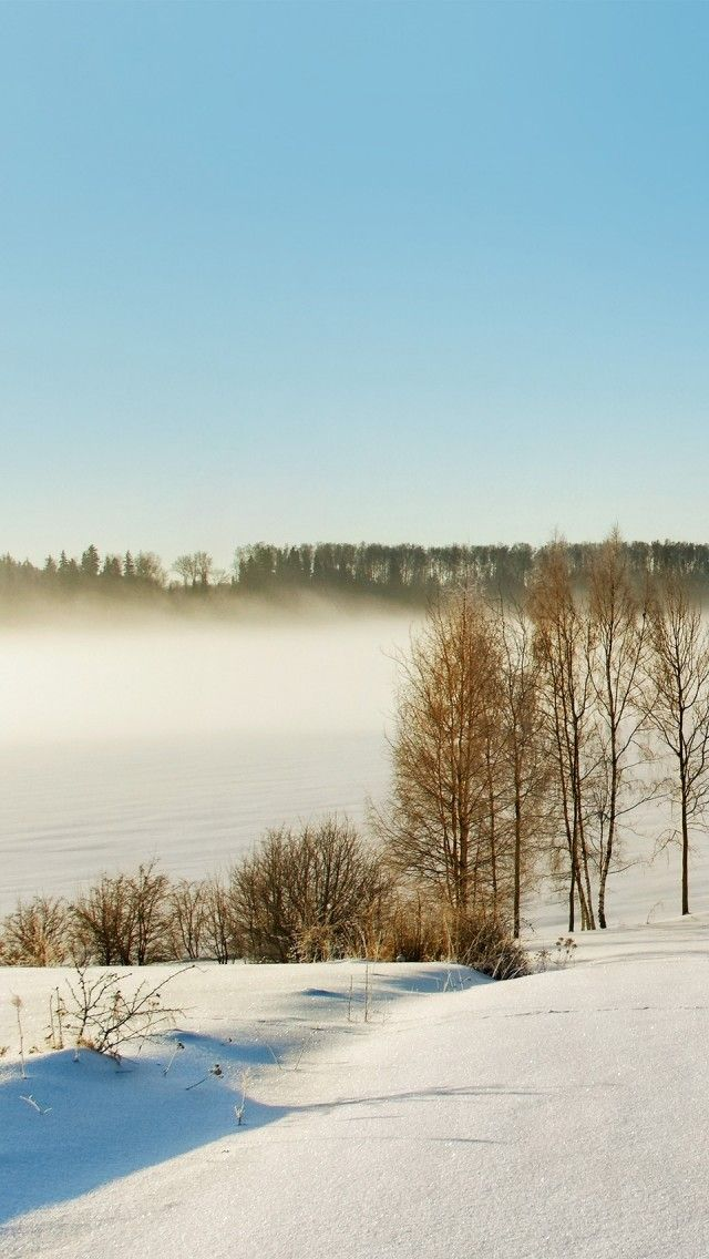 Winter Latvian Landscape | Latvia | Pinterest
