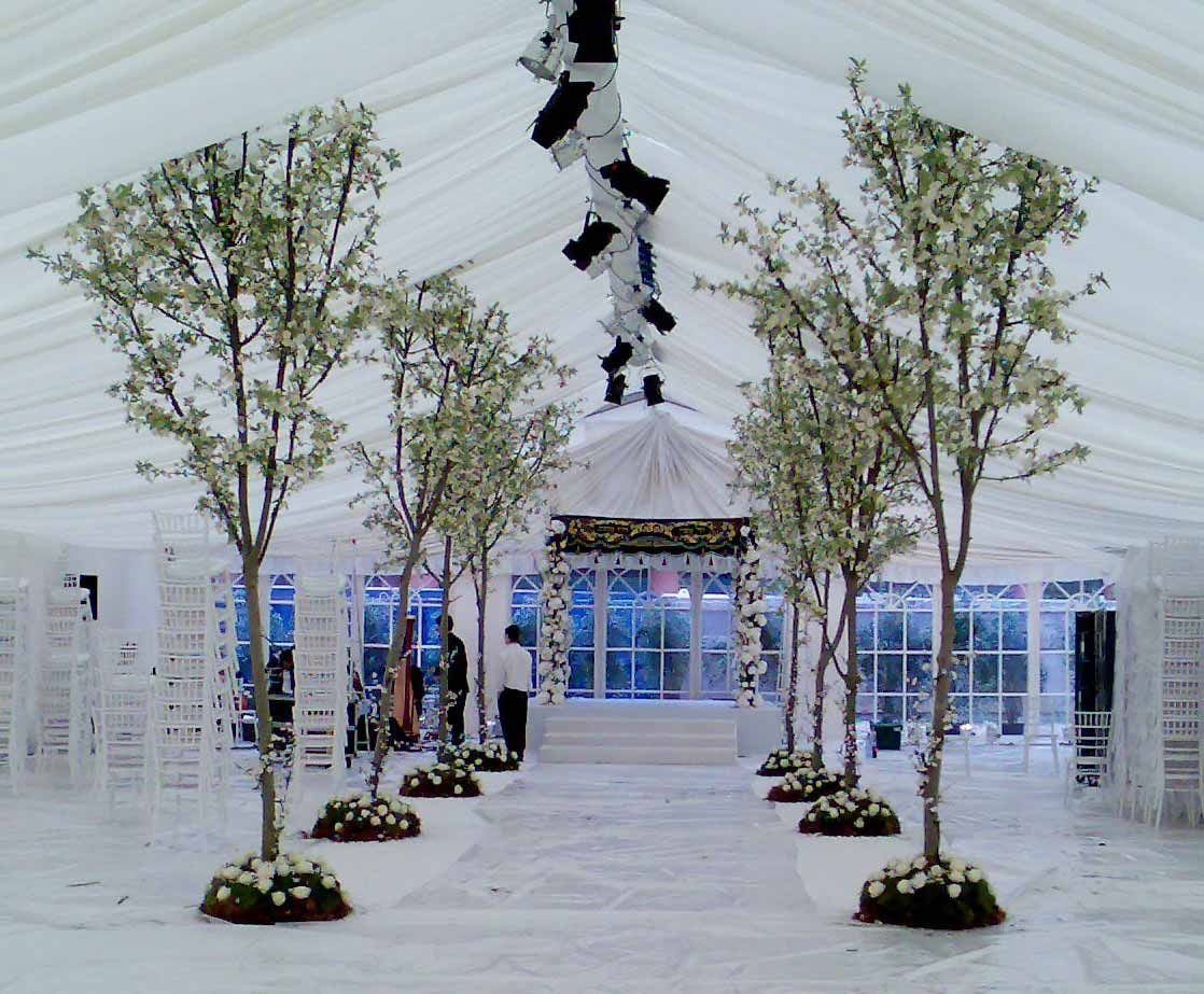 Palmbrokers Event Props And Plants Hire Portfolio