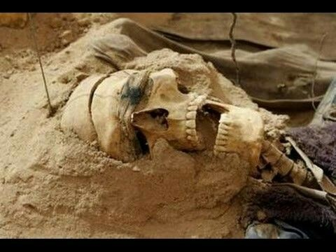 Giant skeleton found in Maryland