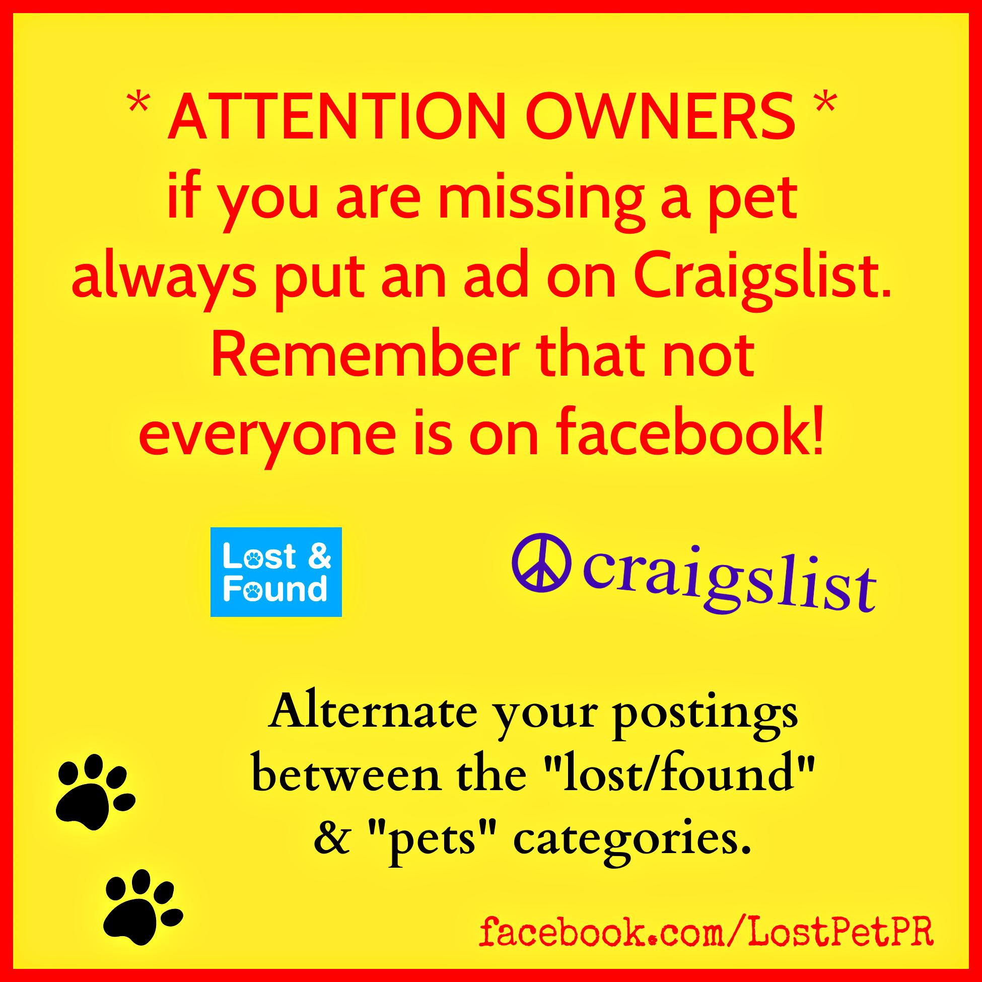 Lost Dog San Antonio, Texas, TX, United States L41468