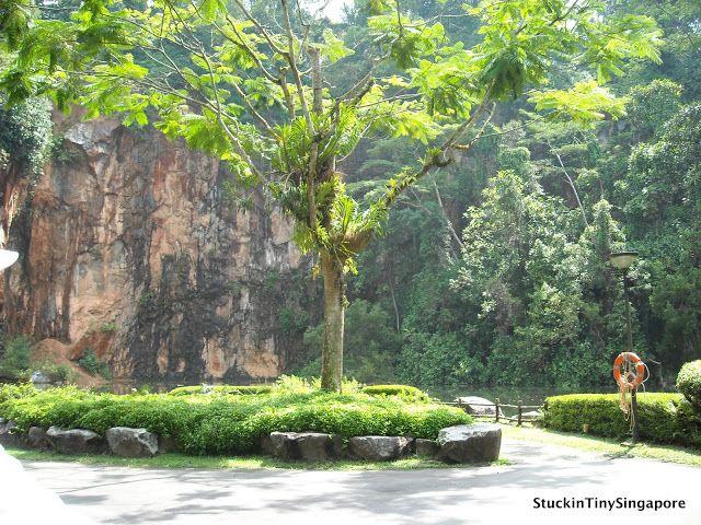Bukit Batok Nature Park Singapore Nature Bukit Batok