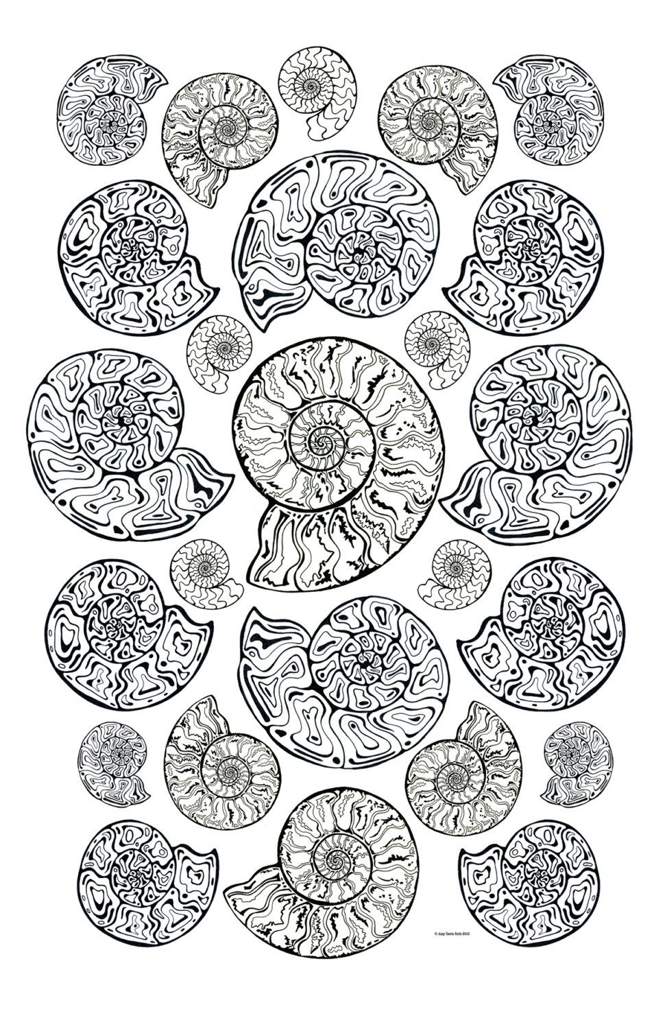 All Ages Coloring Art Print Ammonites Fossil Design 11x17 Poster For You To Color With FREE Markers