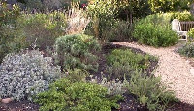 california native landscape designs want your own california native plant garden