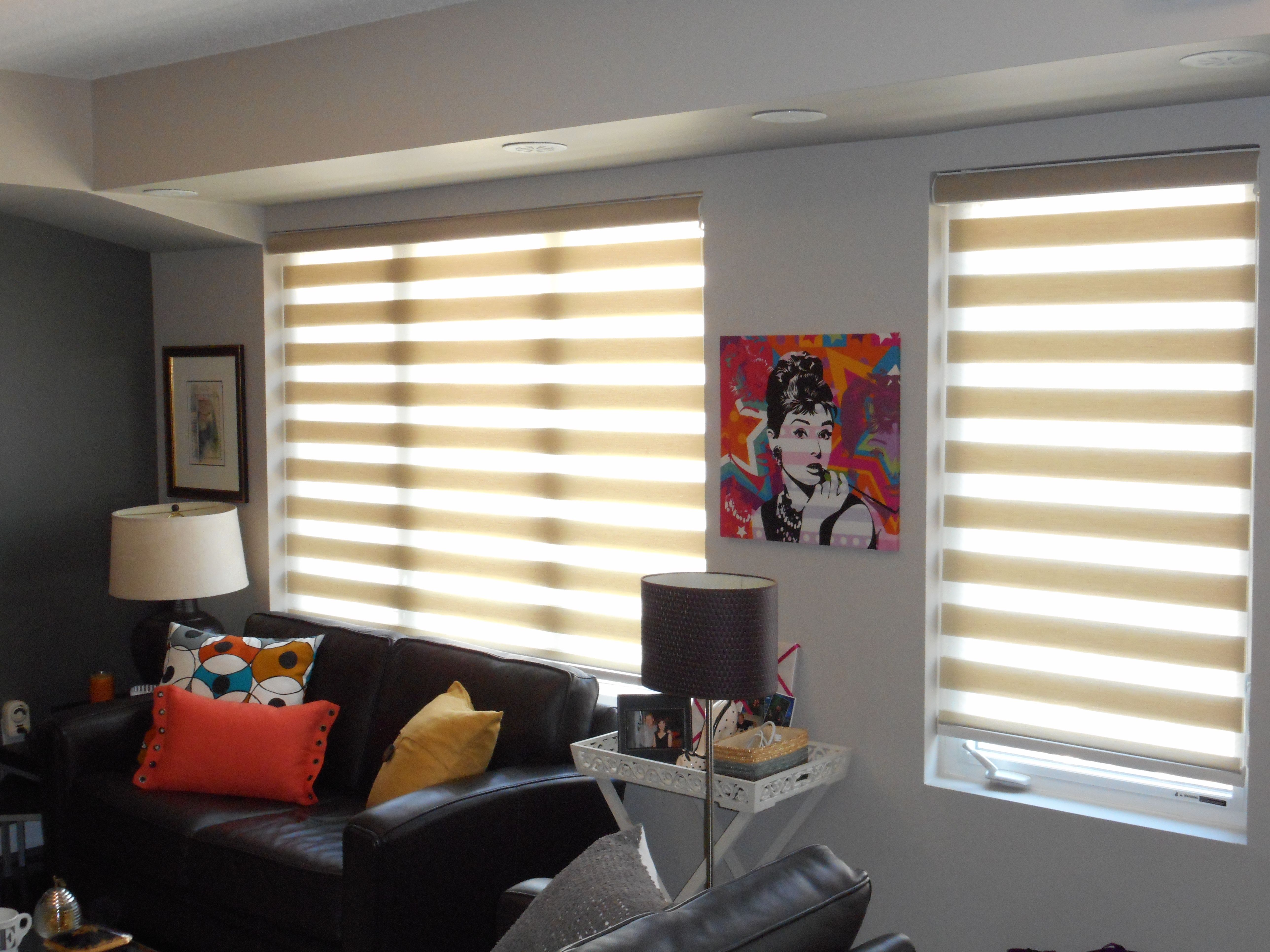 Customer Submitted Photo Awesome Home Decor Zebra Blinds