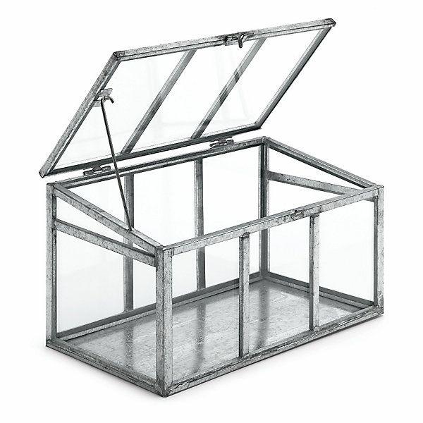 zimmergew chshaus glas und stahl heiraten. Black Bedroom Furniture Sets. Home Design Ideas