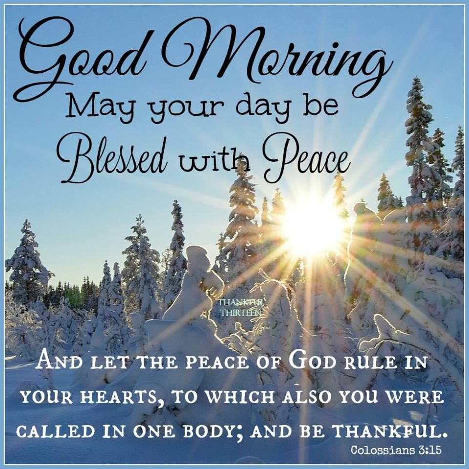 Good Morning May You Have A Day Be Blessed With Peace Morning Quotes For Friends Good Morning Prayer Good Morning Quotes