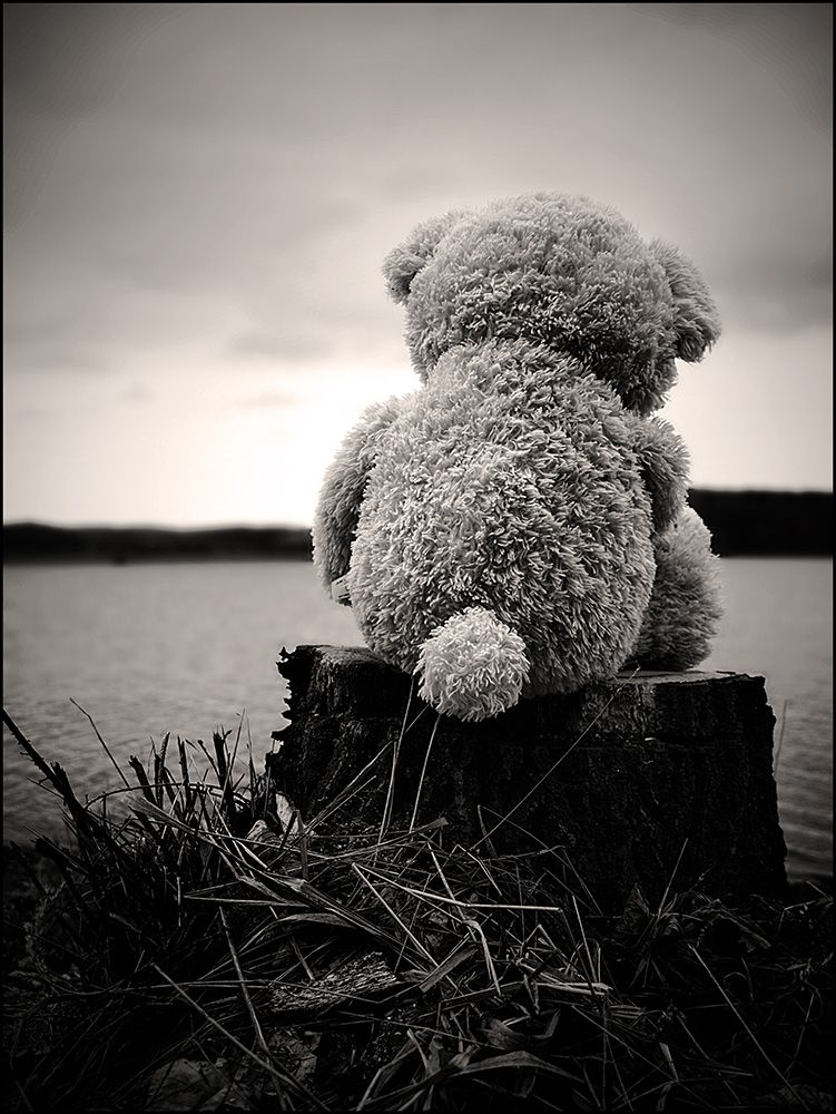 25 Sad Alone Wallpapers Black And White Photography Bear Teddy