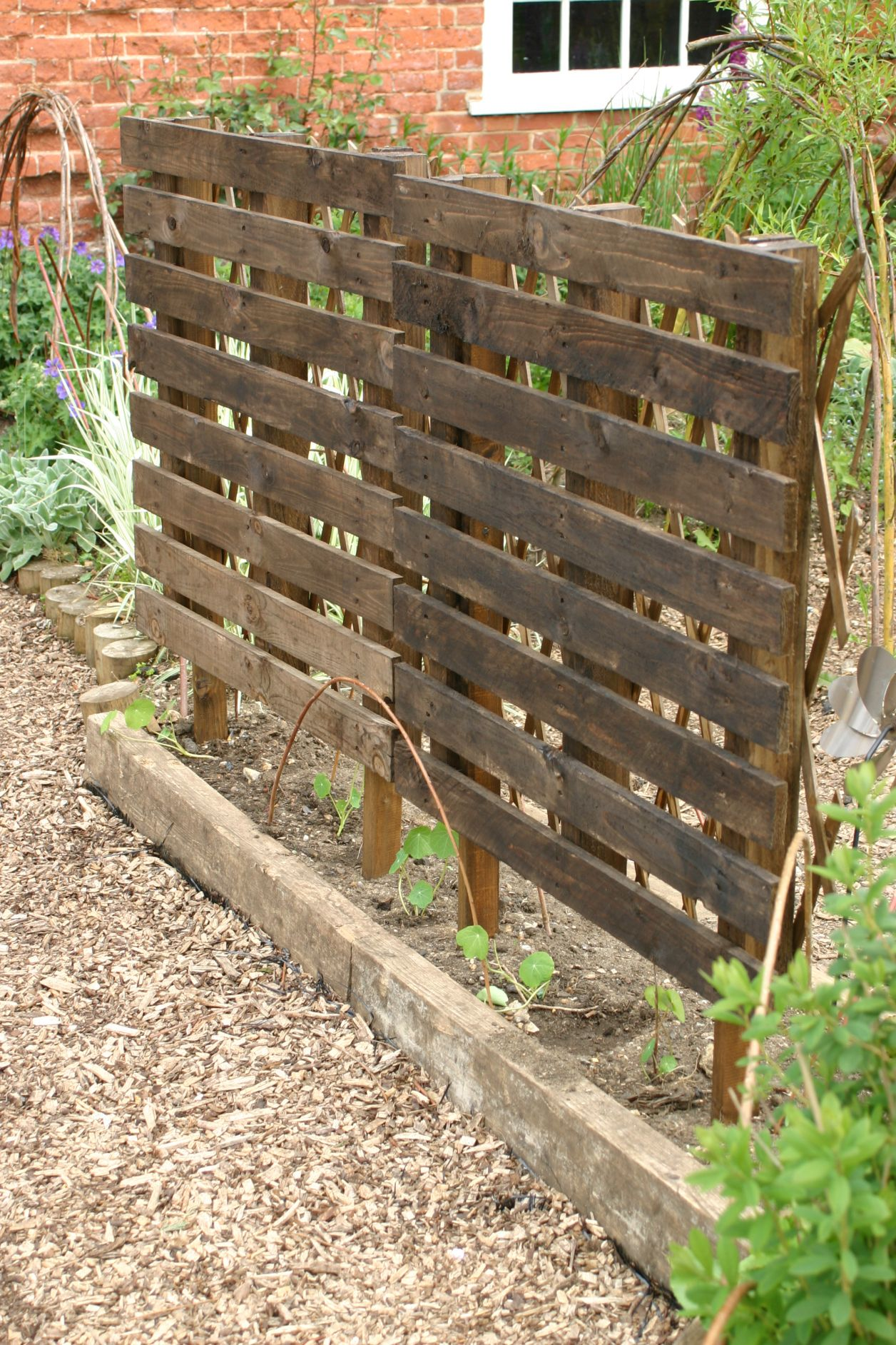 My Own Attempt At A Trellis Screen Made From Two Pallets Fixed To