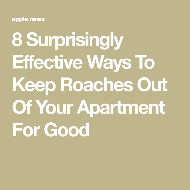 8 Surprisingly Effective Ways To Keep Roaches Out Of Your