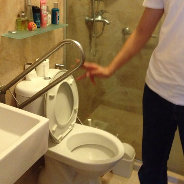 Elderly friendly   Toilet Washroom   Pinterest   Toilet and Washroom