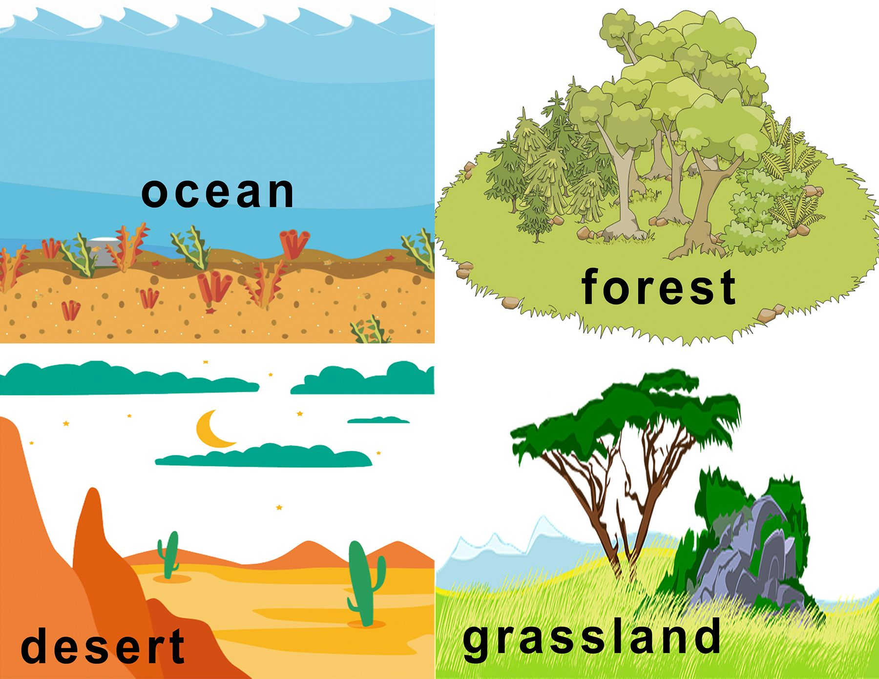 Free Animal Habitat Flashcards With Images