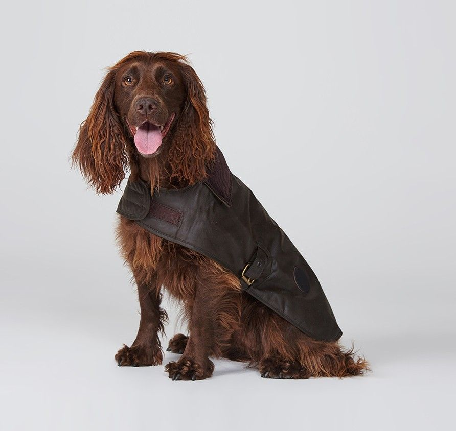Barbour Waxed Cotton Dog Coat Olive Dog Coats Barbour Wax