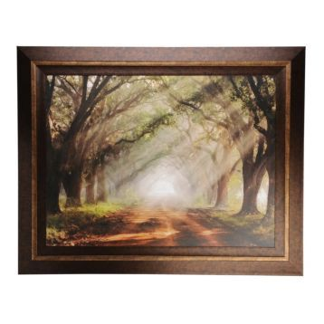 I REALLY WANT THIS PICTURE, BEN WELLS!!!!  Evergreen Plantation Framed Print