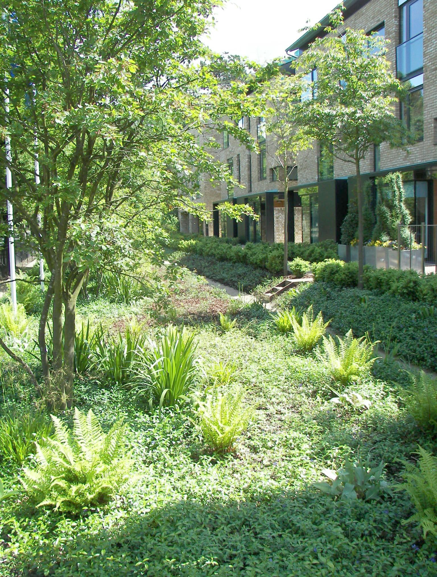 Where To Find A Good And Reputable Landscaper Landscape Architecture Landscape Architect Landscape Architecture Design