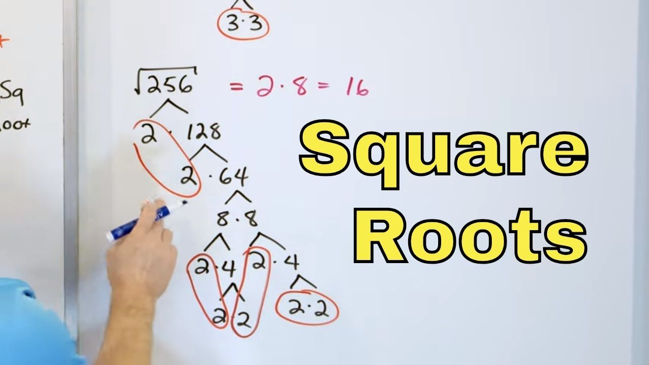 01 Simplify Square Roots With Factor Trees In Algebra Radical Expressions Part 1 Youtube In 2021 Radical Expressions Math Expressions Square Roots