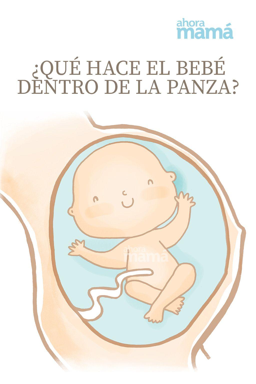 Qué Hace El Bebé Dentro De La Panza Etapas De Gestacion Bebe Reflejo De Succion