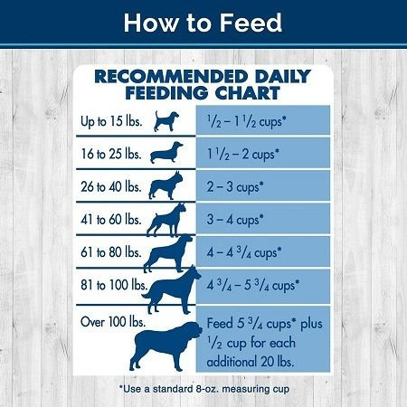 Dog Feeding Guide Senior Dog Food Reviews Pinterest Dog Food