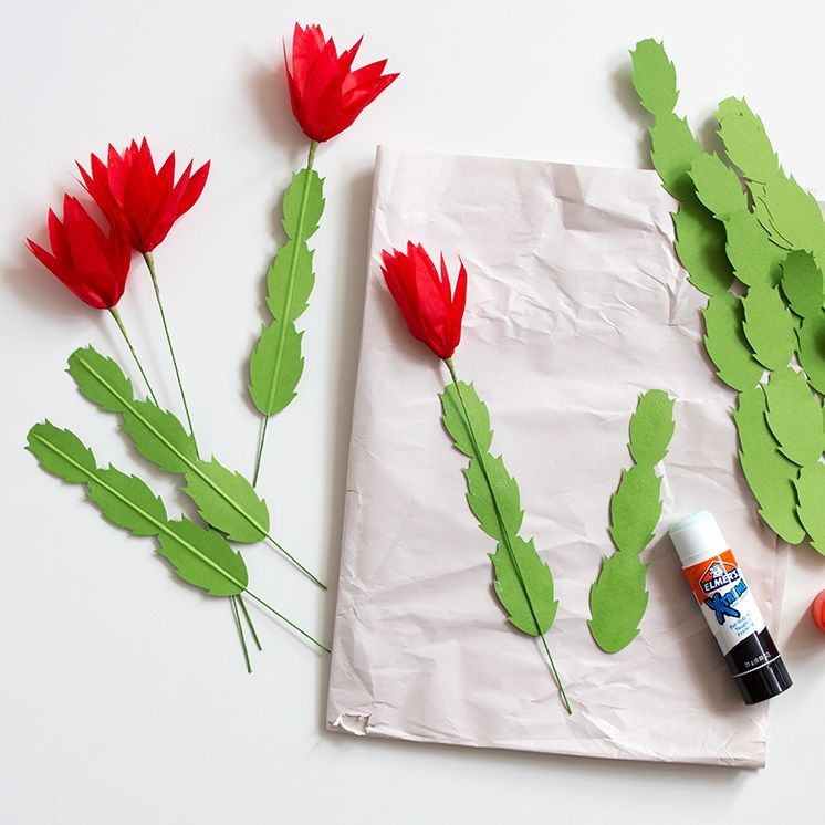 DIY Paper Christmas Cactus Cactusflower Cactus Flower In 2018
