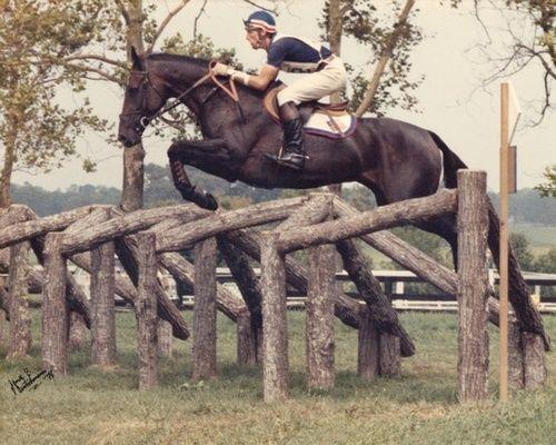 Tad Coffin riding Bally Cor in 1976 Olympics. | Concurso completo ...