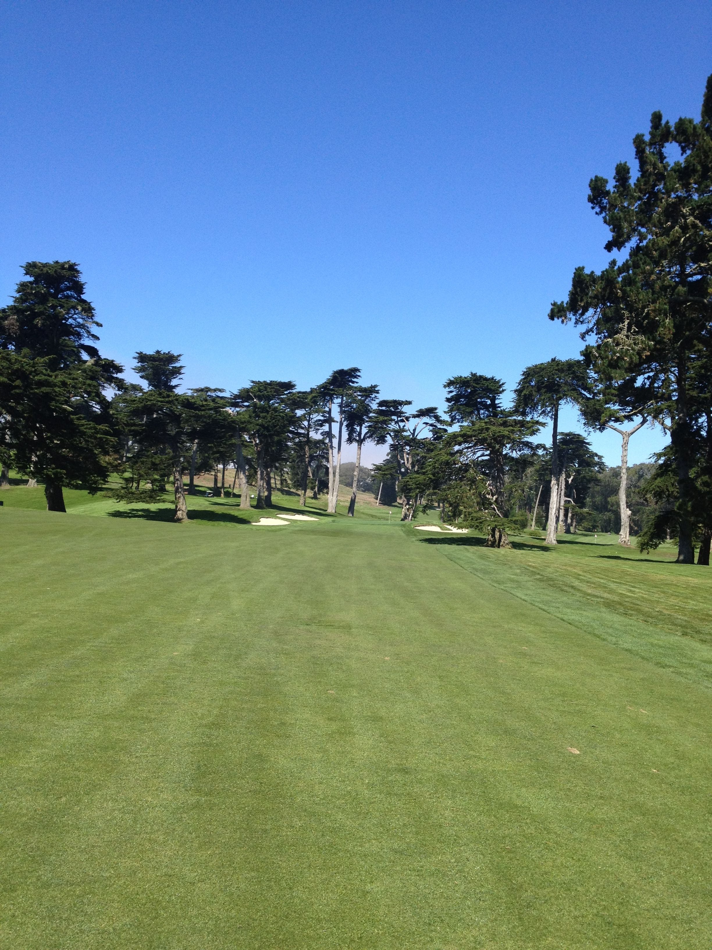 Hole 11, Olympic Club Lake course Golf course