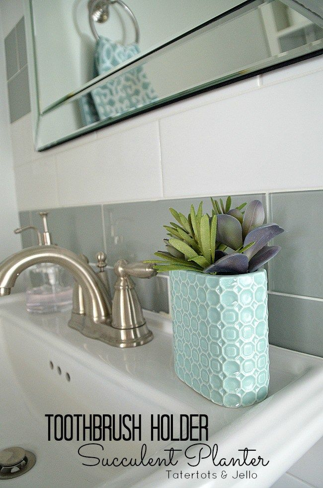 Turn A Toothbrush Holder Into A Succulent Planter Hack Mason Jar Succulents Succulent Planter Bathroom Vanity Decor