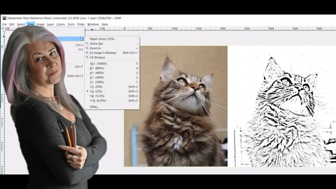 Making A Line Drawing From Your Reference Photo Using Gimp Gimp Tutorial Line Drawing Gimp