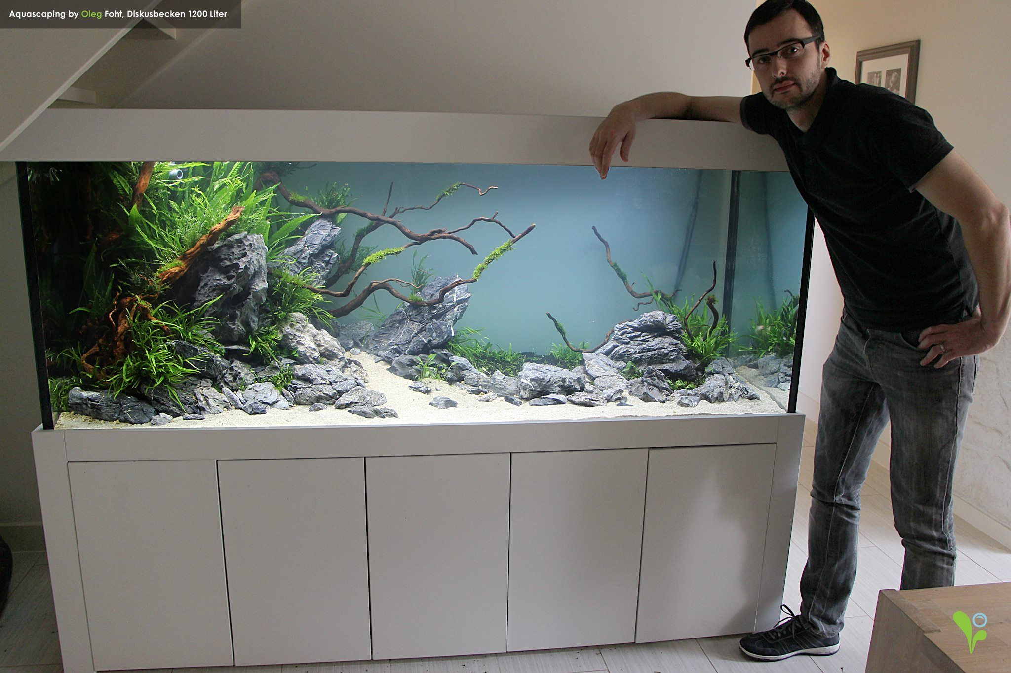 new customer tank 1 day old aquascaping by oleg foht. Black Bedroom Furniture Sets. Home Design Ideas