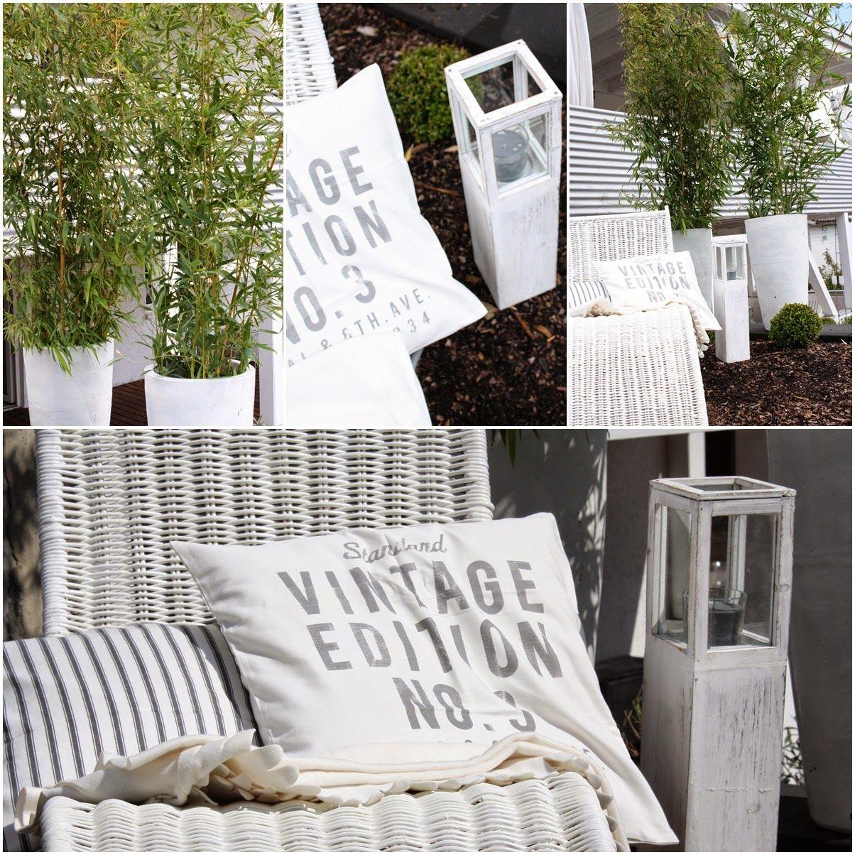 bambus, White, outdoor, garden