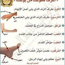 الكوع والبوع في لسان العرب Learning Arabic Math Learning