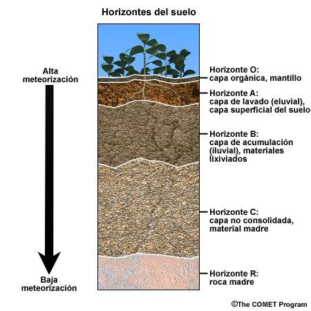 Curso Basico De Hidrologia Tipos De Suelo Cultivo De Hortalizas Suelos