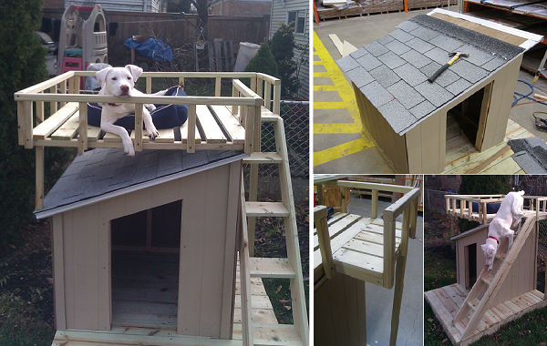 Diy Dog House With Roof Top Deck Dog House Plans Dog House Diy House Training Dogs