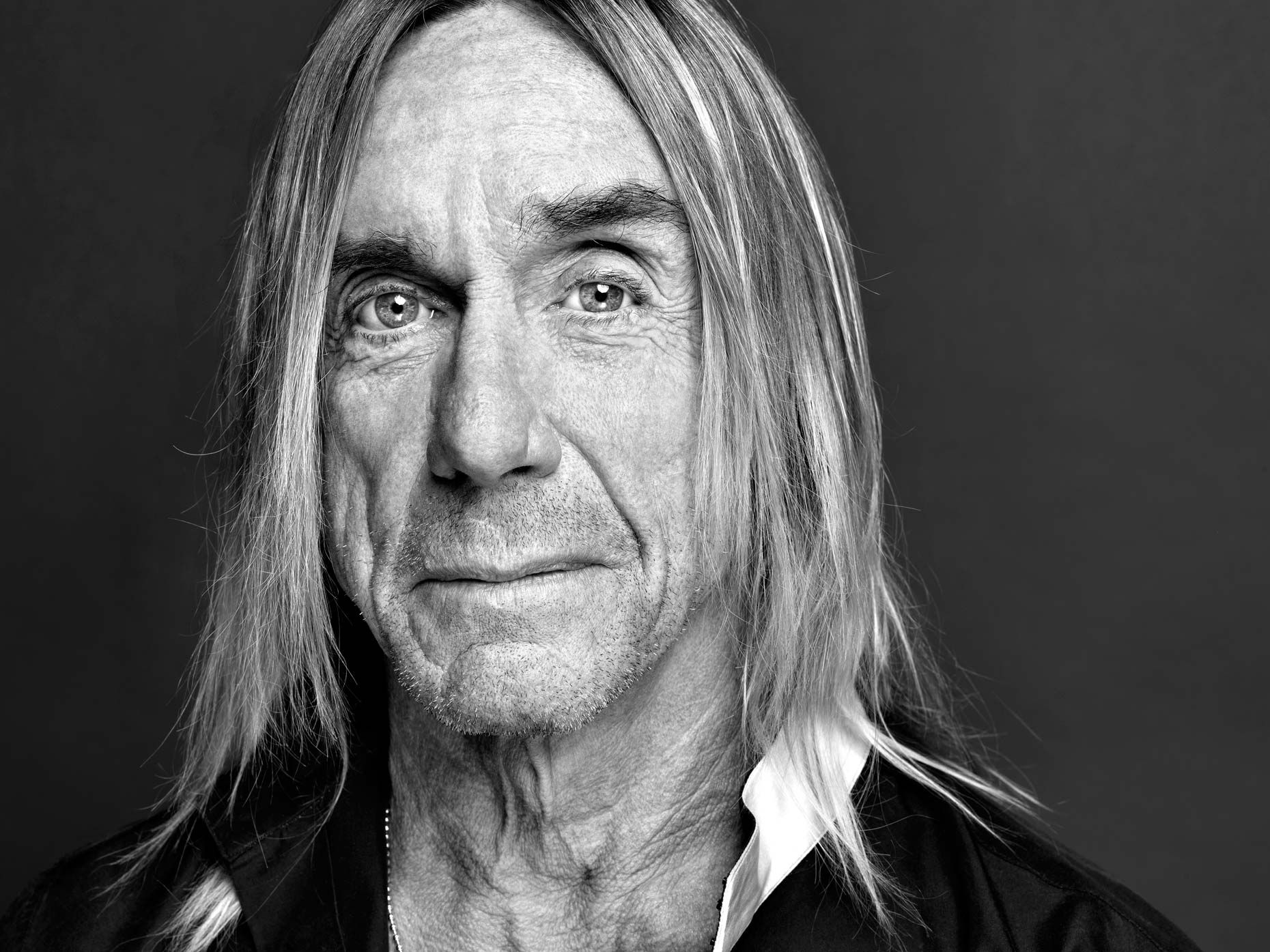 Billedresultat for iggy pop