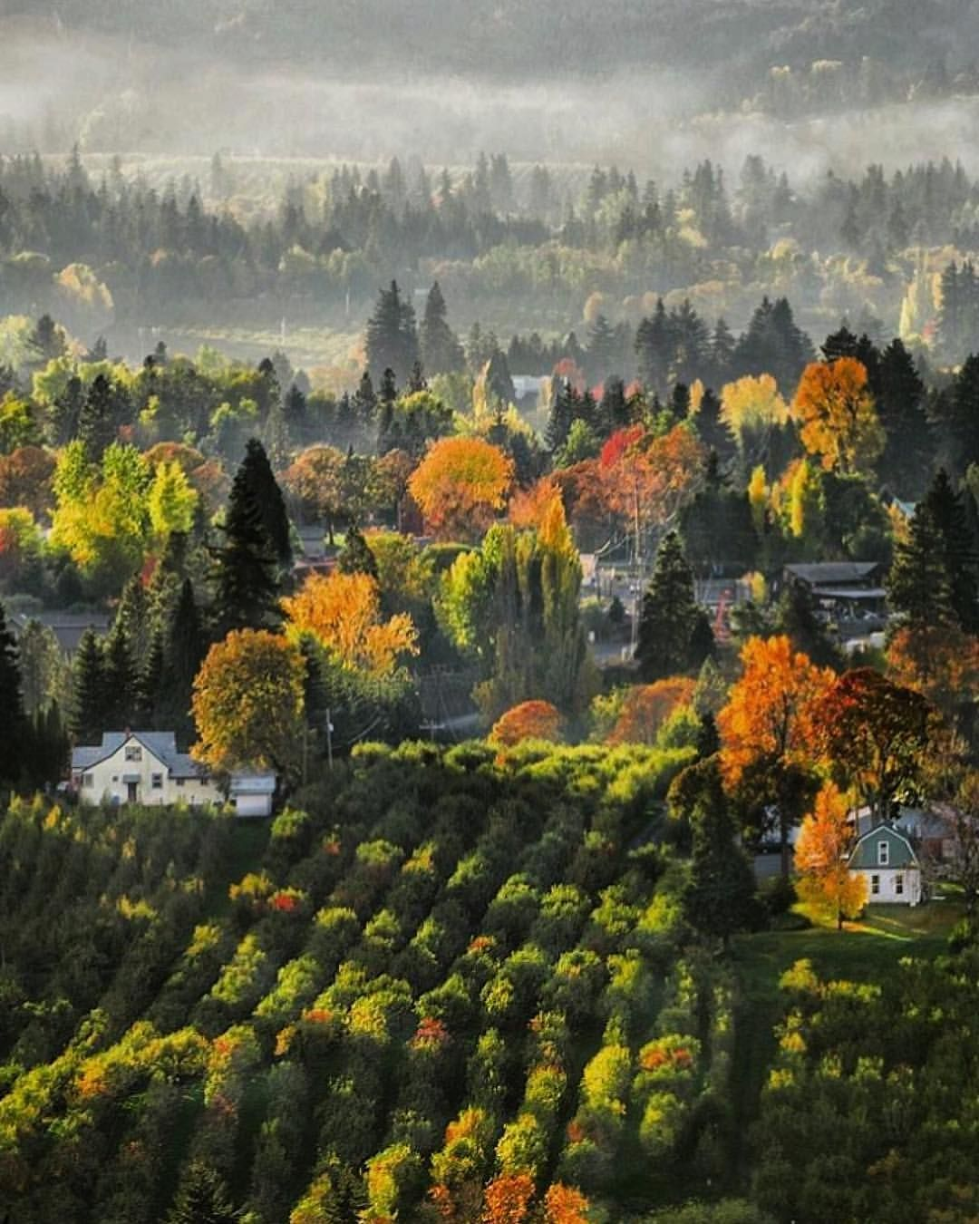 Hood River And Surrounding Areas So Important To Go Visit And