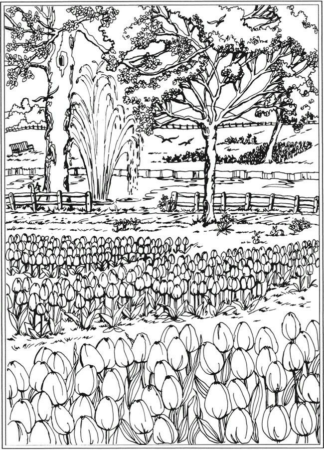 Pin by Marilyn on Colouring Pages - downloads | Dover ...