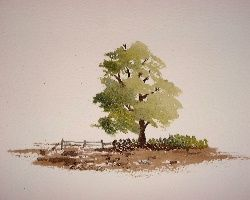 How to paint a tree in watercolors.