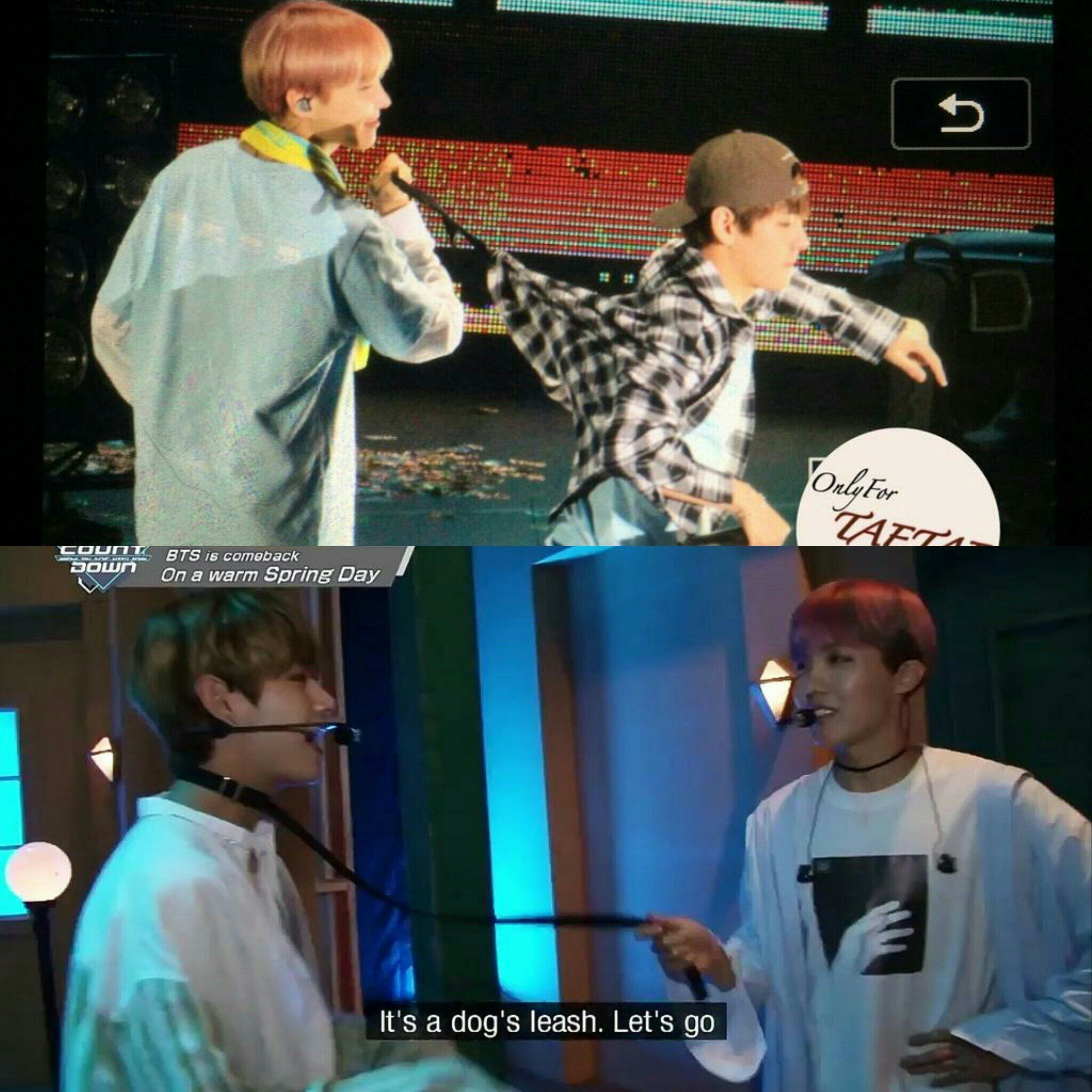 I'm not saying Vhope are kinky lovers but that's exactly what I'm saying   (3)