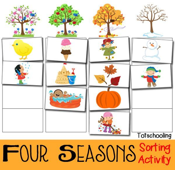 four seasons sorting activity free printable unit seasons
