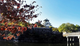 Japan: My First Impressions