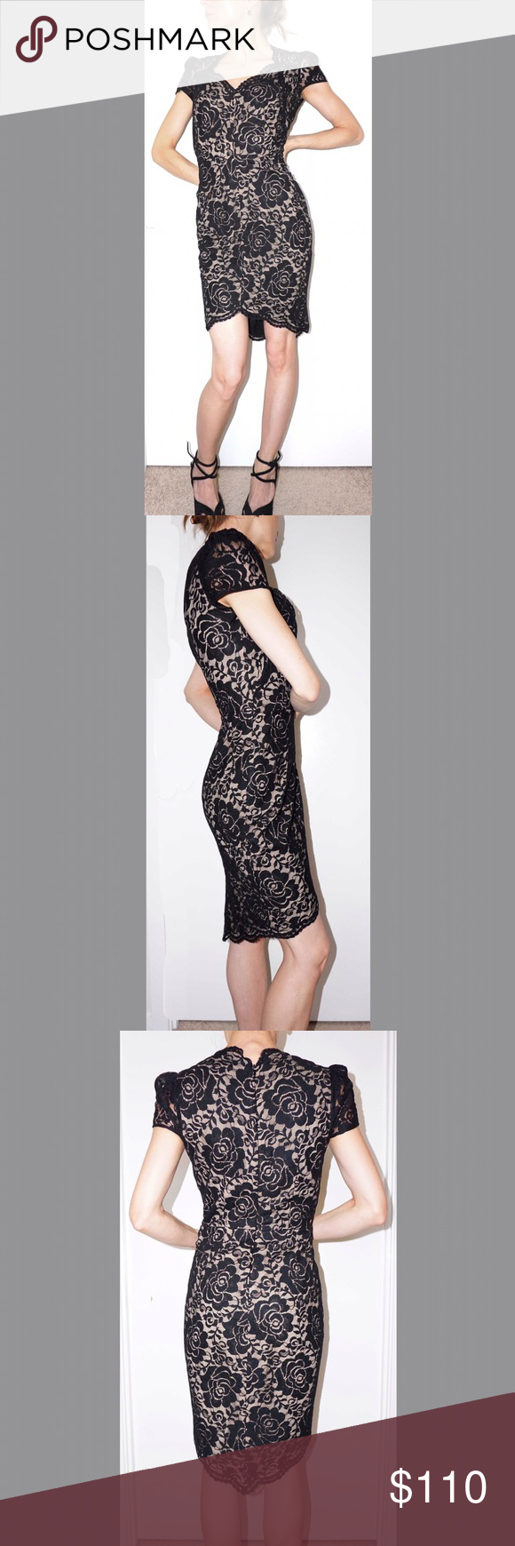 Lace below knee dress  Cynthia Steffe lace dress  Lace dress black Lace dress and Black laces