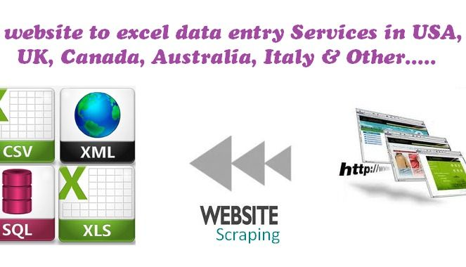 Website to Excel Data Entry, Web Data Entry, Outsource Web
