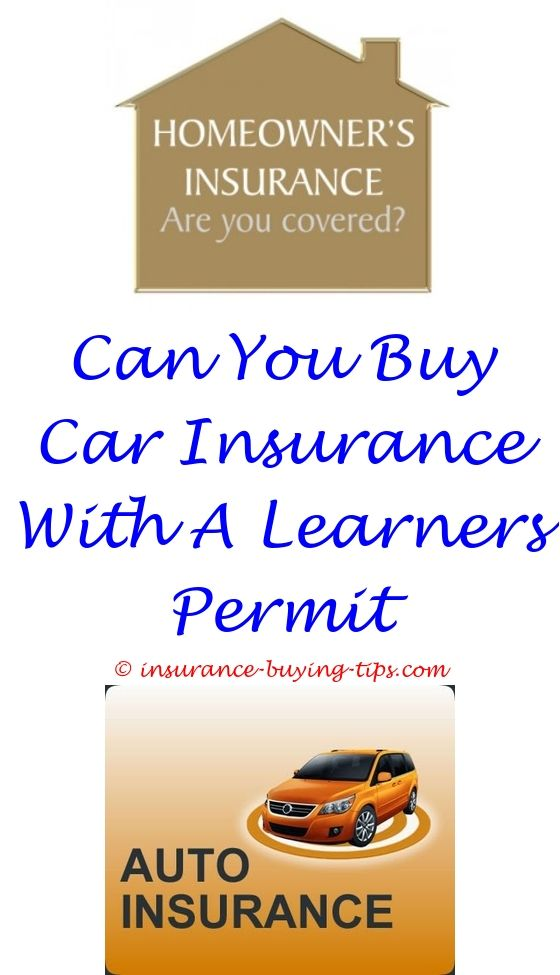 Car Insurance Quotes Nj A Dollar A Day Car Insurance Nj  Buy Health Insurance Term Life