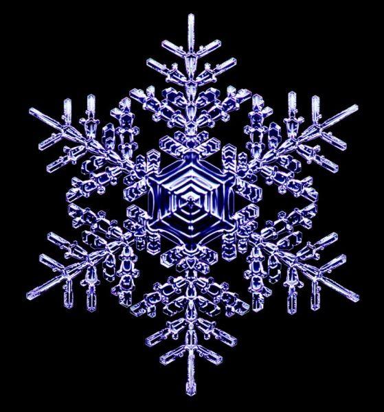 """I fiocchi di neve nascondono un sacco di curiosità anche per gli appassionati di fisica e di... geometria. Per esempio: come assumono quell'aspetto che, al microscopio, appare tanto complesso e caratteristico? I fiocchi partono tutti da una forma """"base"""", un cristallo esagonale di ghiaccio, da cui progressivamente spuntano """"rametti"""" e altre strutture. Eccone una collezione realizzata da Kenneth Libbrecht, fisico del California Institute of Technology."""