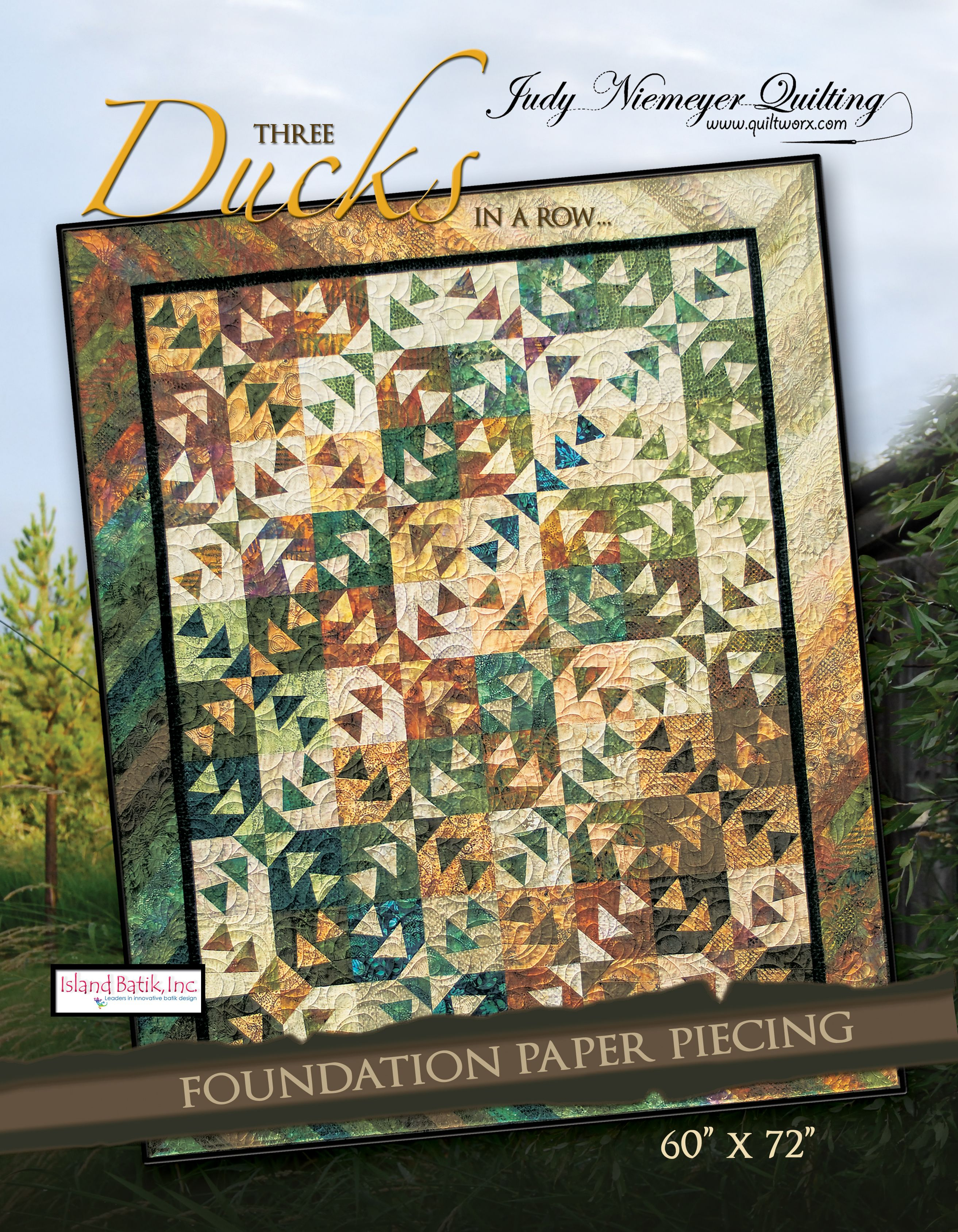 Quiltworx Com A Judy Niemeyer Company Foundation Paper Piecing Paper Piecing Quilts Flying Geese Quilt