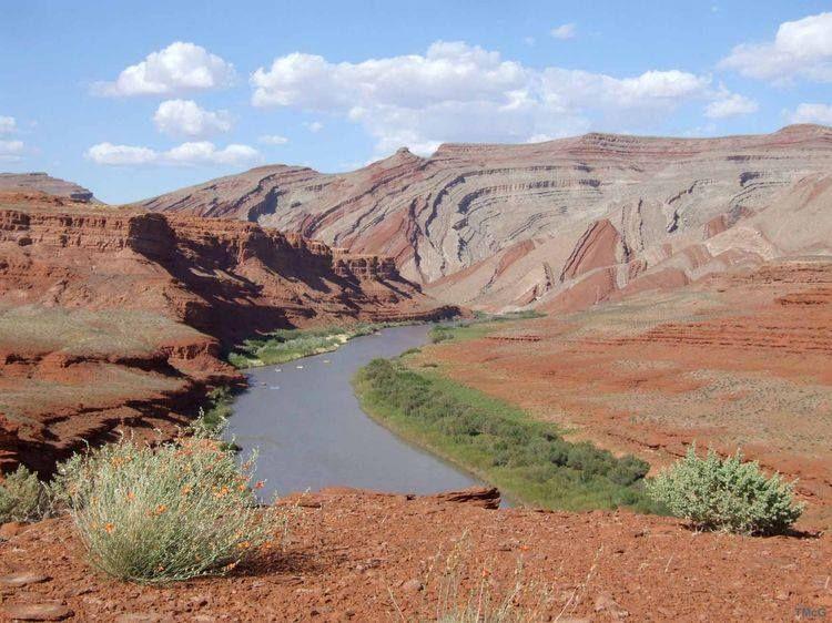 San Juan River at Raplee Monocline, southeastern Utah