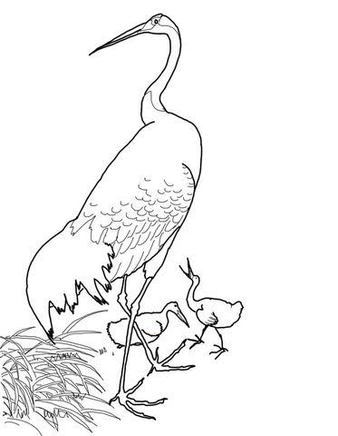 Grulla japonesa de cabeza roja por Ohara Koson Dibujo para
