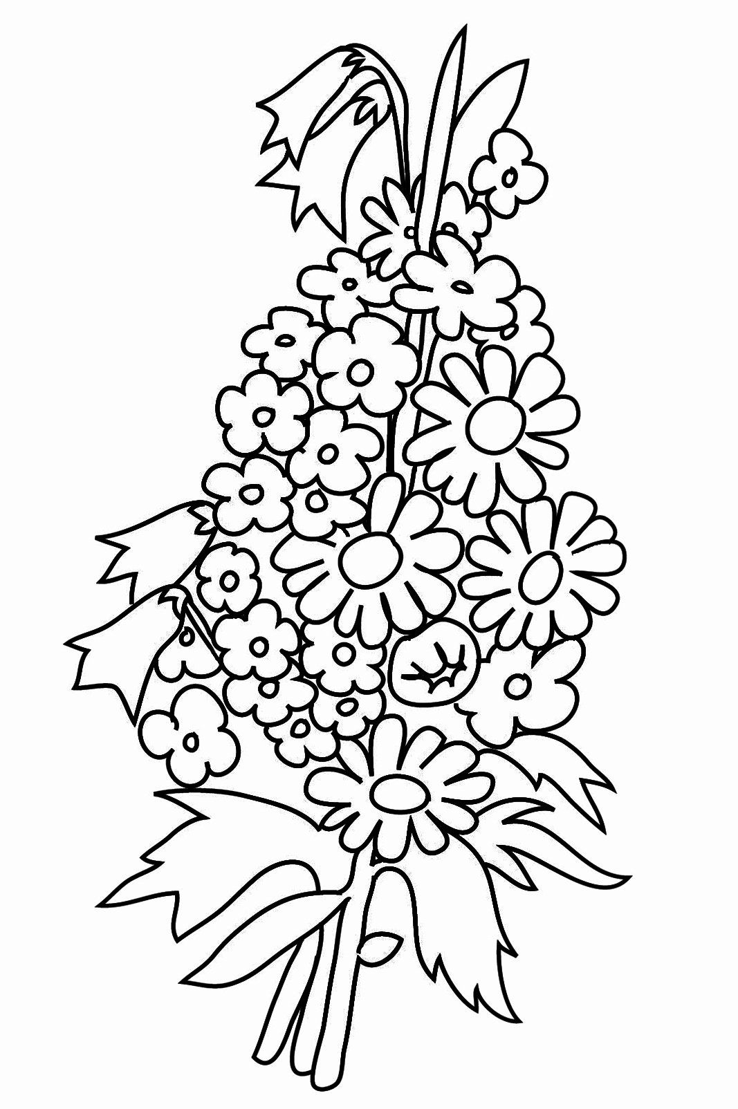 Printable Coloring Pictures Of Flowers New For Me Not Coloring Pages In 2020 Flower Coloring Pages Printable Flower Coloring Pages Elsa Coloring Pages