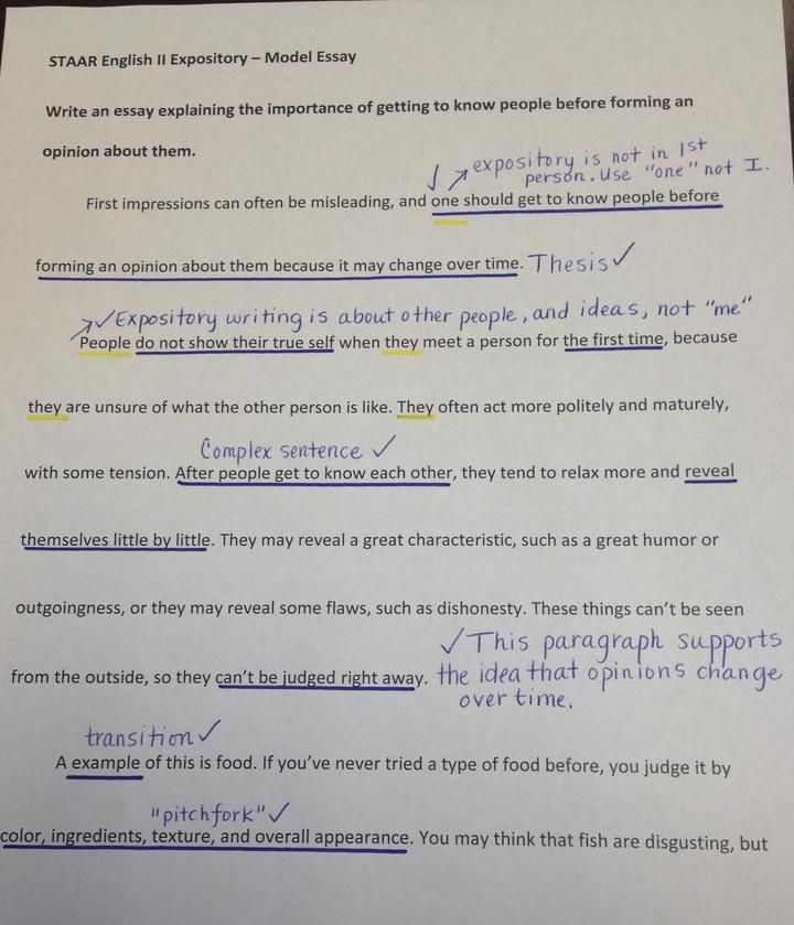 Best 25+ Expository essay examples ideas on Pinterest ...