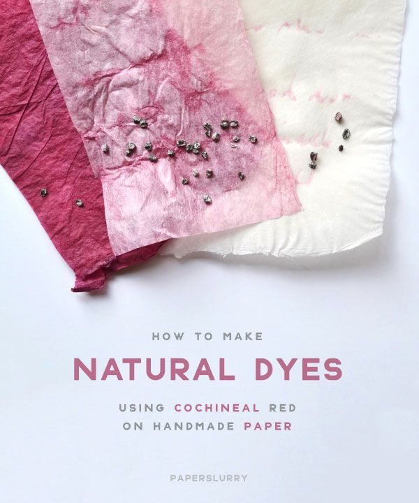Make Natural Dyes For Handmade Paper: Cochineal Red