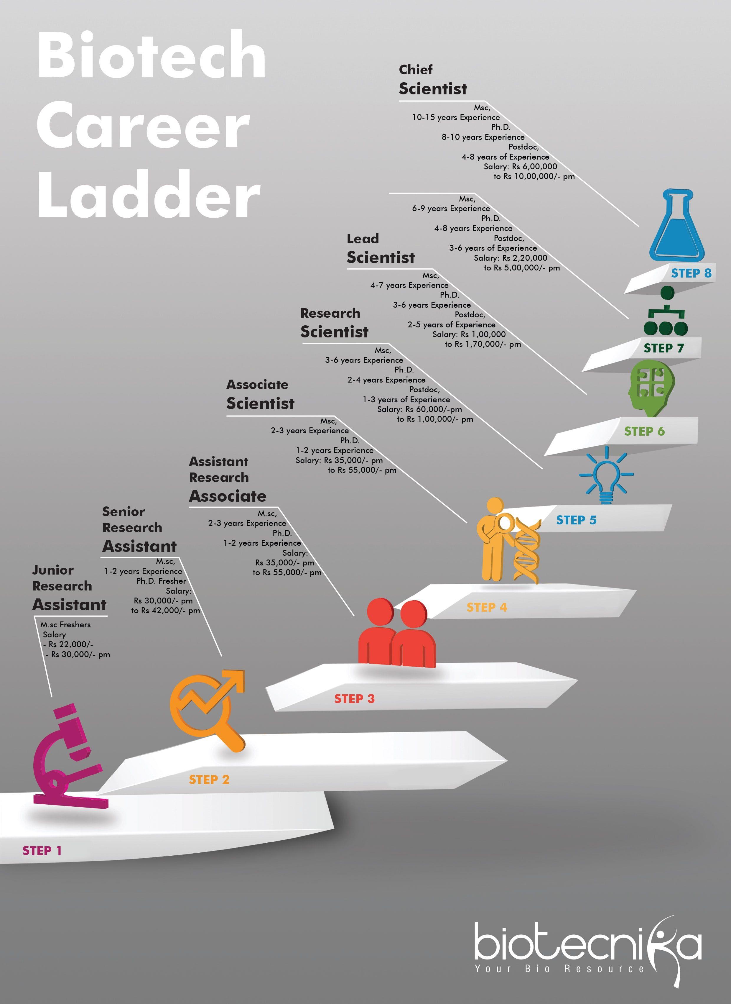 Biotech Career Ladder Biotech Job Positions Salary Details